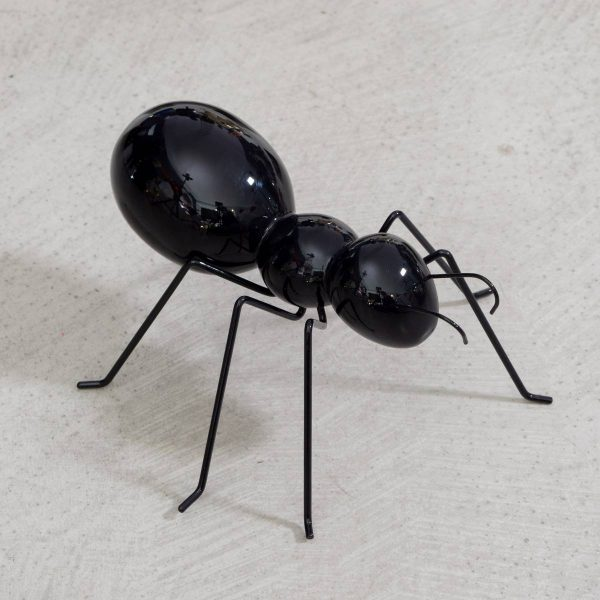 ANTS-formica-S-nera