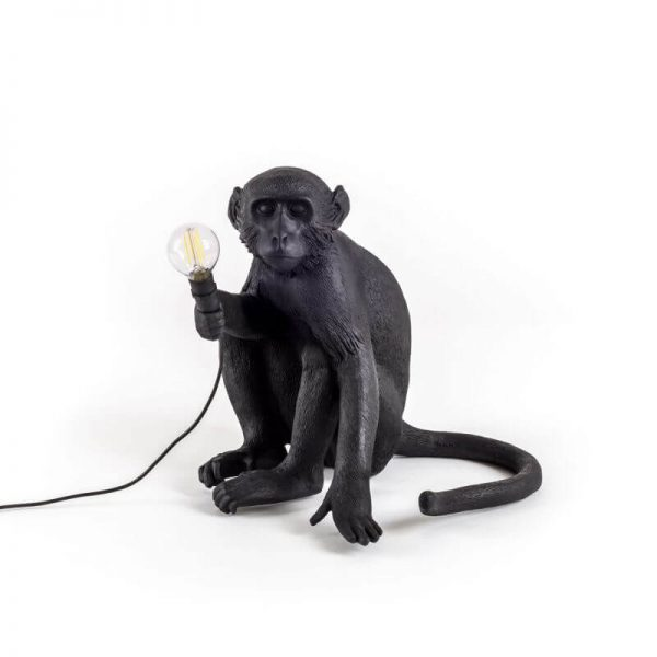 monkey-nero-esterno-seduto