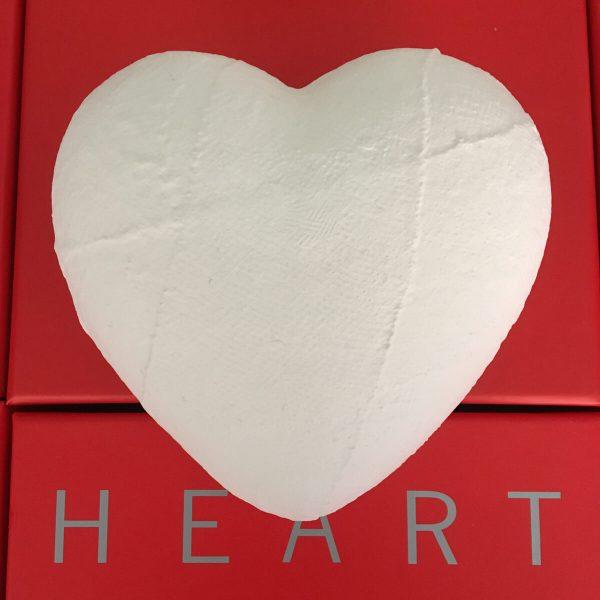 the-heart-ingessato-22